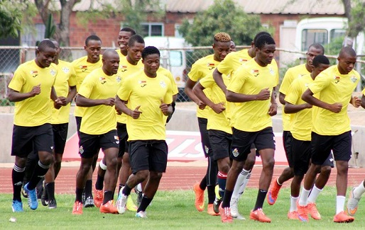 Warriors squad to face Swaziland named